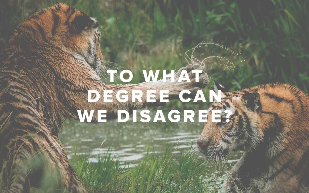 To What Degree Can We Disagree?